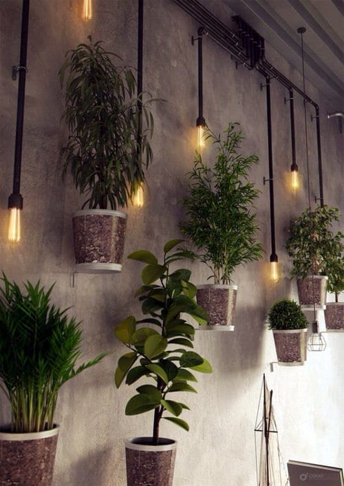 Wall Hanging Plant Decor Ideas 8