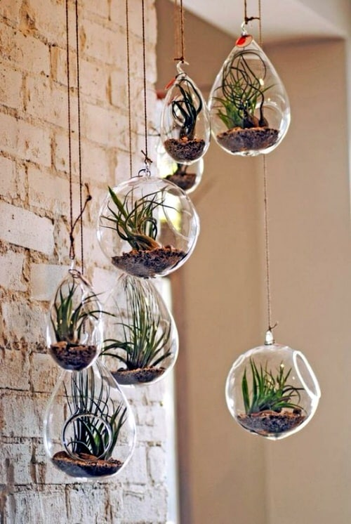 Wall Hanging Plant Decor Ideas 9