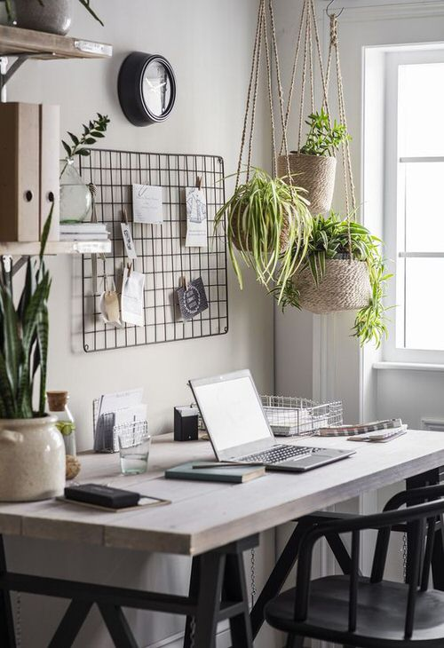 Indoor Plant Home Office Ideas
