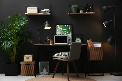 Office Plant Decor for Green Working Environment 11