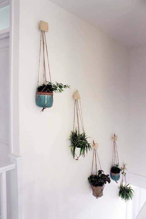 Wall Hanging Plant Decor Ideas