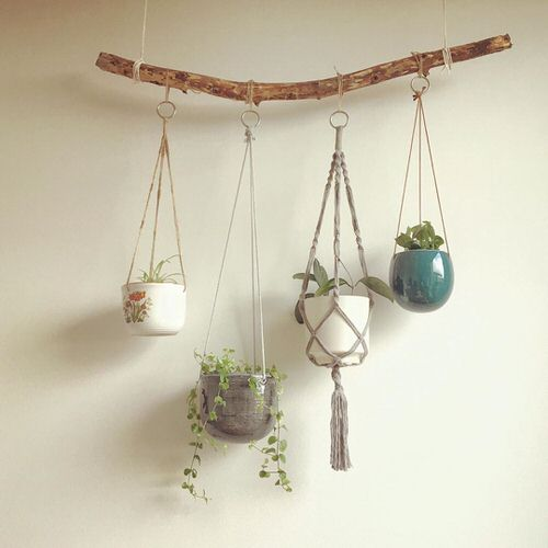 Wall Hanging Plant Decor Ideas 3