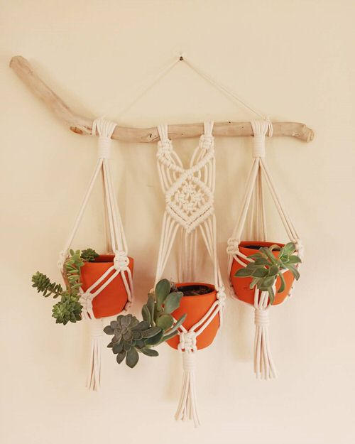Wall Hanging Plant Decor Ideas 15