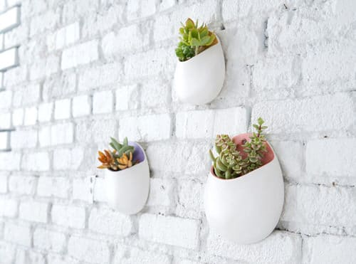 Wall Hanging Plant Decor Ideas 7