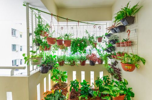 Balcony Hanging Planter Ideas 2
