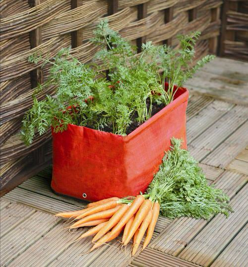 How to Make A Delicious Soup Garden in Containers 3