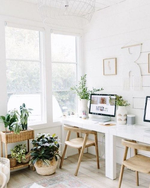 Indoor Plant Home Office Ideas 3
