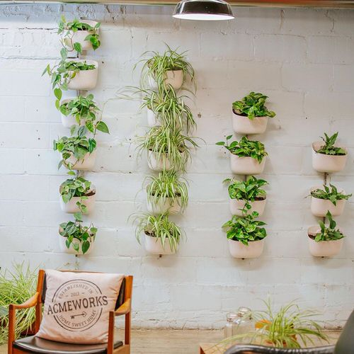 Green Ideas for Modern Wall Decoration 5