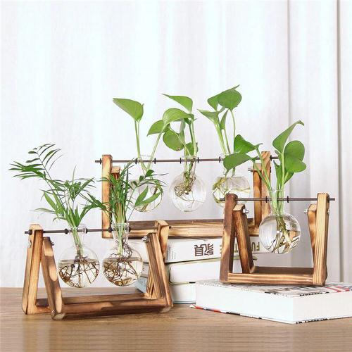 Indoor Plant Propagation Station Ideas 5