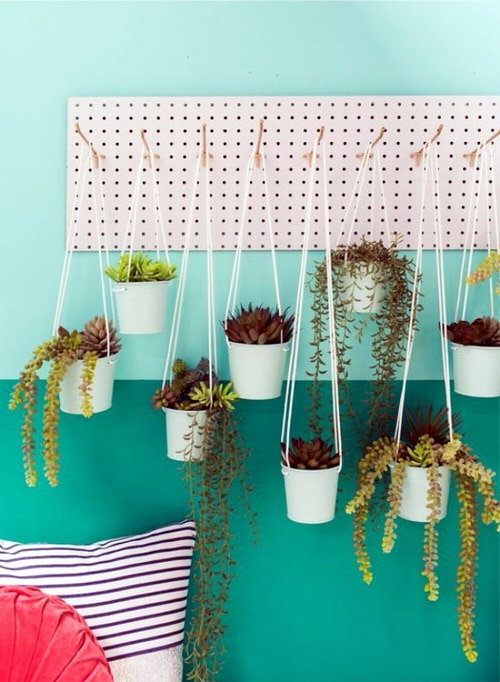 Wall Hanging Plant Decor Ideas 5