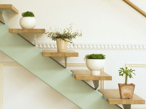 Indoor Garden on the Staircase 28