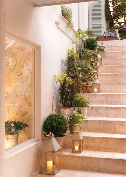 Indoor Garden on the Staircase 2