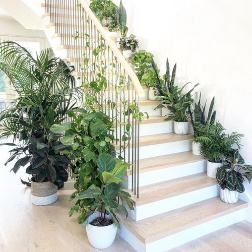 Indoor Garden on the Staircase 11