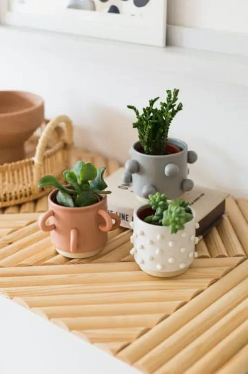 No-Money Home Decor Ideas With Indoor Plants