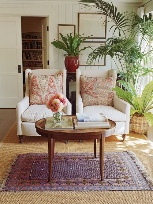 Best House Plants Home Pictures for Inspiration 9