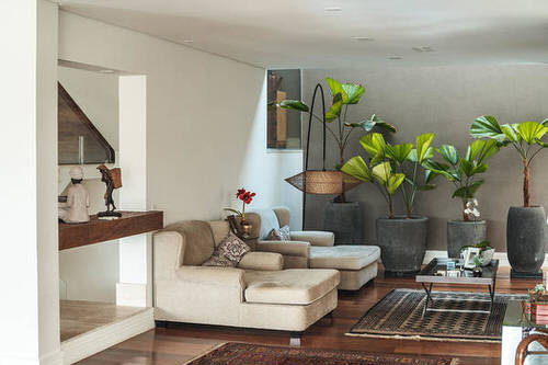 Apartment Decoration Ideas with Plants