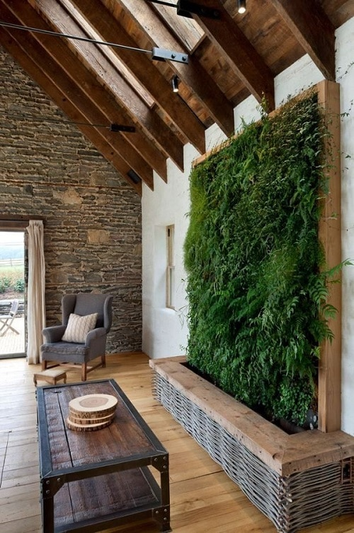 Best Plants for a Vertical Wall