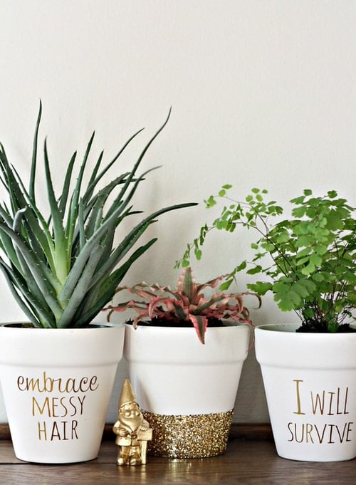 DIY Houseplant Pots Ideas and Makeover 14