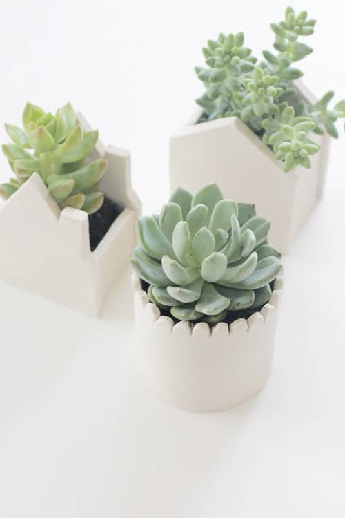 DIY Houseplant Pots Ideas and Makeover 5