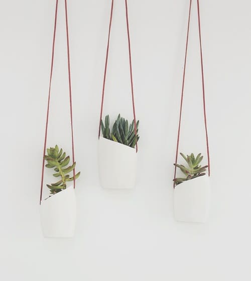 DIY Plant Hanger Ideas 5