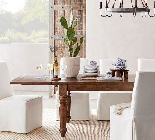 Best Indoor Plants for Dining Room 7