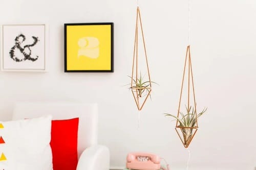 DIY Plant Hanger Ideas 8