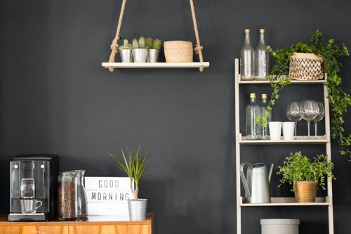Plant Shelves Ideas