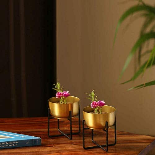 Table Decorating Ideas with Small Potted Houseplants