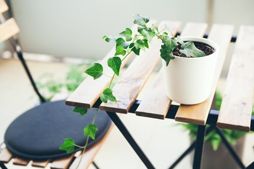 Table Decorating Ideas with Small Potted Houseplants 10