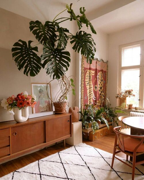 Tropical Indoor Plants Pictures and Ideas from Instagram 13