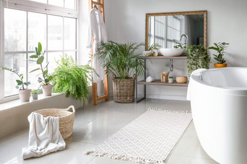 Pin Worthy Houseplant Pictures 5