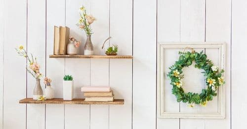 Plant Shelves Ideas 2