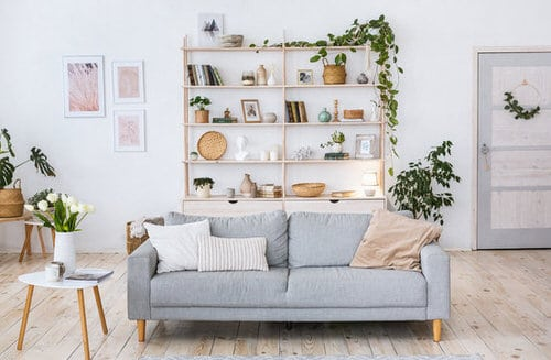 Plant Shelves Ideas 3