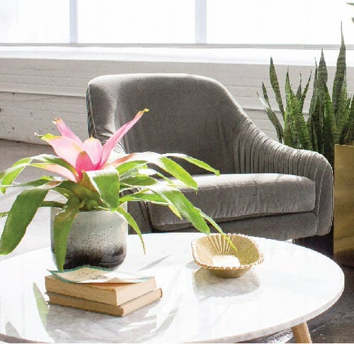 Table Decorating Ideas with Small Potted Houseplants 3