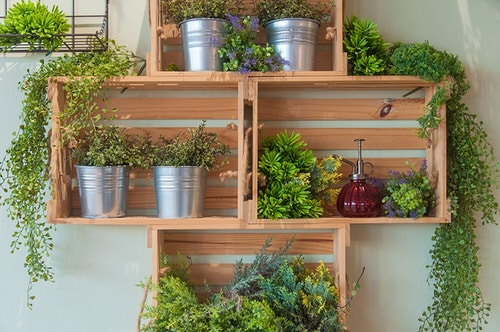 Plant Shelves Ideas 4