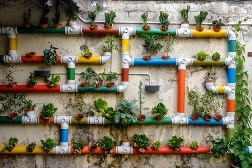 Rainbow Vertical Garden Ideas 3