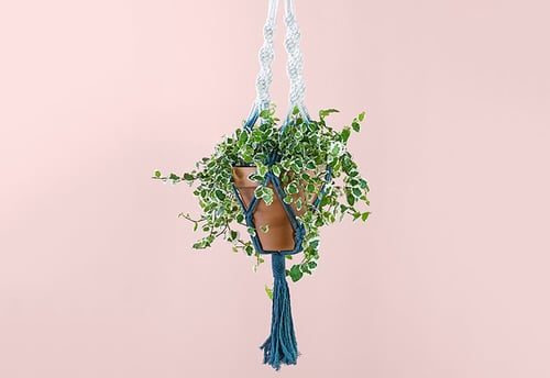 DIY Plant Hanger Ideas 4