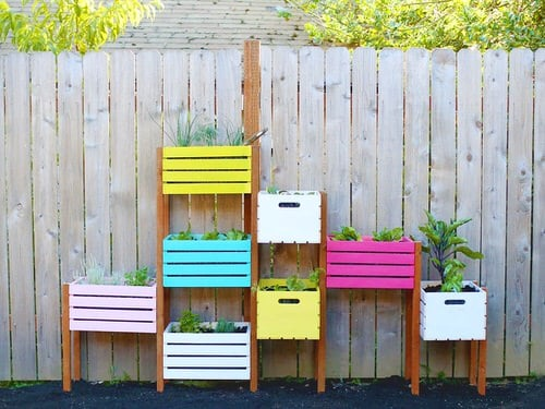 Rainbow Vertical Garden Ideas 4