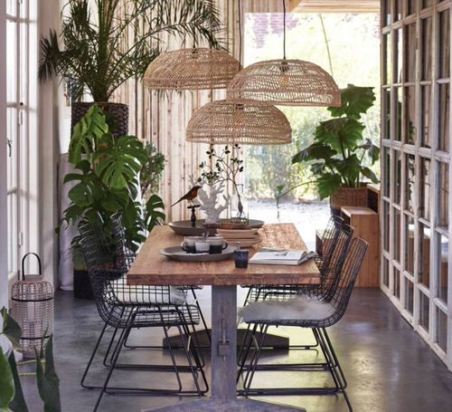 Indoor Plants Dining Room Décor Ideas 20