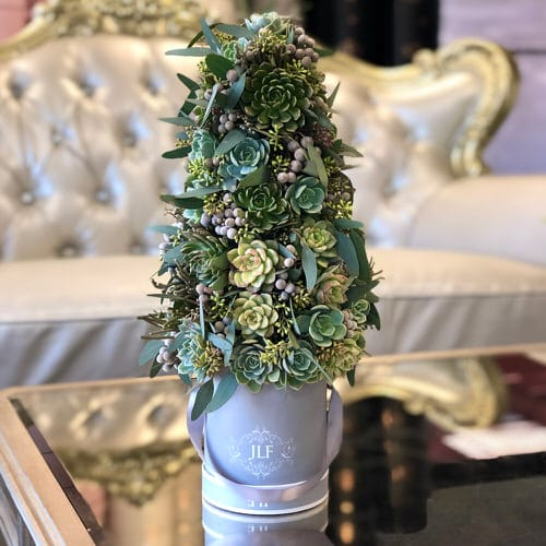 Succulent Christmas Trees 8