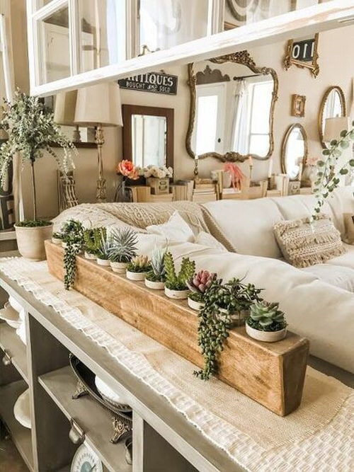 Extremely Beautiful Drawing Room Décor Ideas with Succulents 6