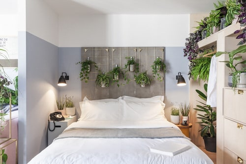 Plant Headboard Ideas for Ultimate Houseplant Lovers 7