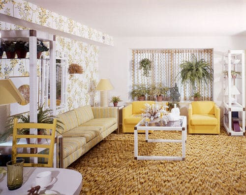 Stylize Your Home with Big and Lush Ferns 7