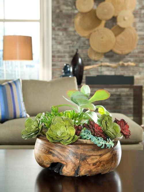 Extremely Beautiful Drawing Room Décor Ideas with Succulents 7