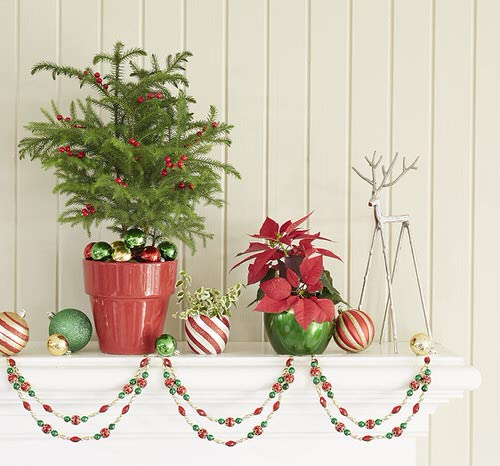 Potted Christmas Tree Pictures to Win Your Heart 8