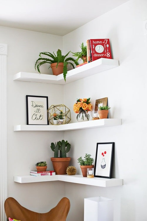 DIY Indoor Plant Shelves Ideas 8