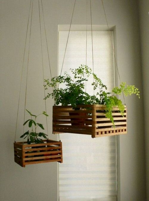 Clever Ways to Hang Your Plants 9