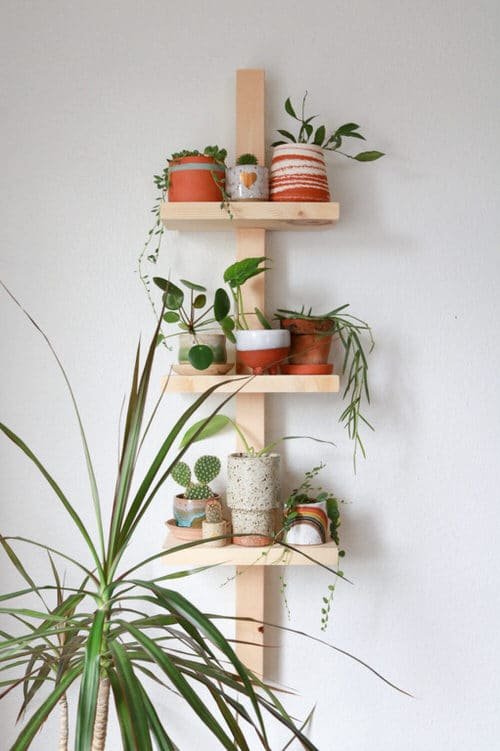 DIY Indoor Plant Shelves Ideas
