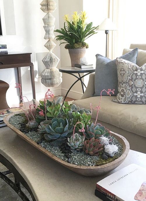 Extremely Beautiful Drawing Room Décor Ideas with Succulents