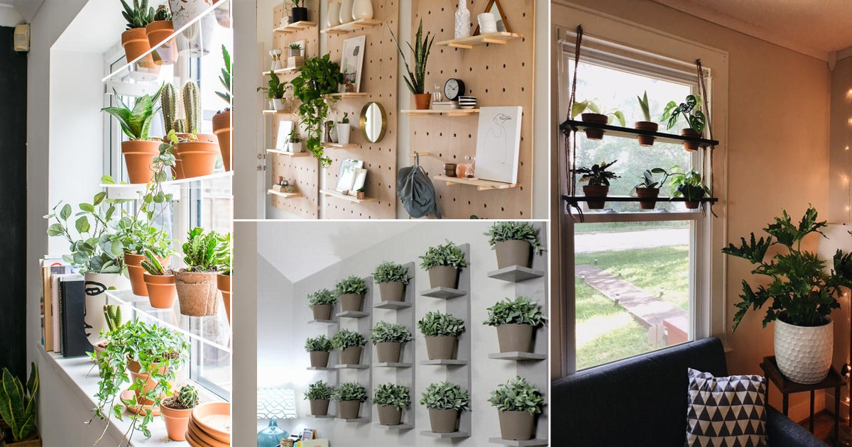 20 Diy Indoor Plant Shelves Ideas That You D Definitely Want